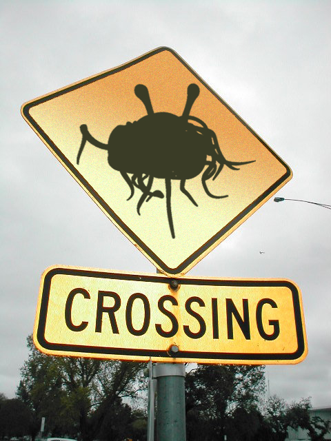 fsm_crossing.jpg