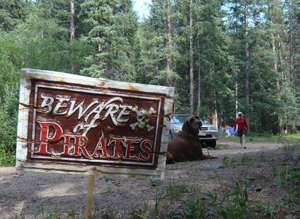 dn pirates sign