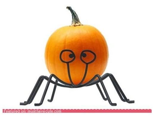 NoodlyPumpkinHolder
